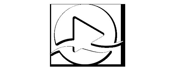 FWF_ICON_Logo-Schatten4
